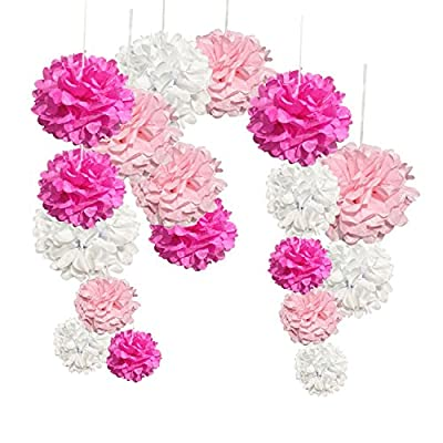 iEventStar 18 pcs Paper Tissue Pom Poms Wedding Party Decoration