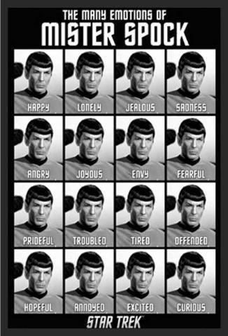 Buyartforless FRAMED Mister Spock  Star Trek 36x24 Art Print