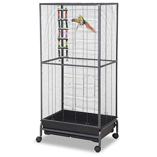 Montana Cages | Sittichkäfig, Käfig, Voliere, Vogelkäfig Kansas II - Antik XL Sittichvoliere