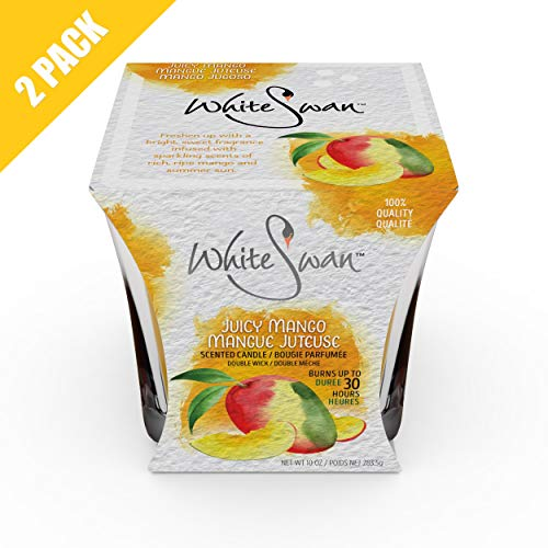 Mango Scented Candle - 9