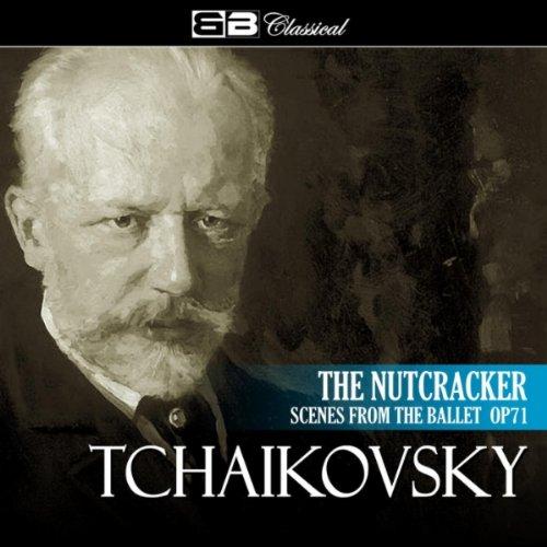 (Nutcracker Ballet, Op. 71: The Fir Wood in Winter)