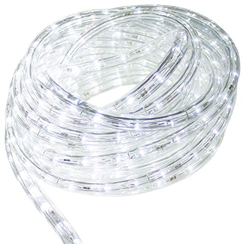 AQLighting AQL Dimmable 50ft LED Rope Light Spool, 120 Volts, Commercial Grade Indoor/Outdoor Rope Light, IP65 Waterproof (Cool White) ()