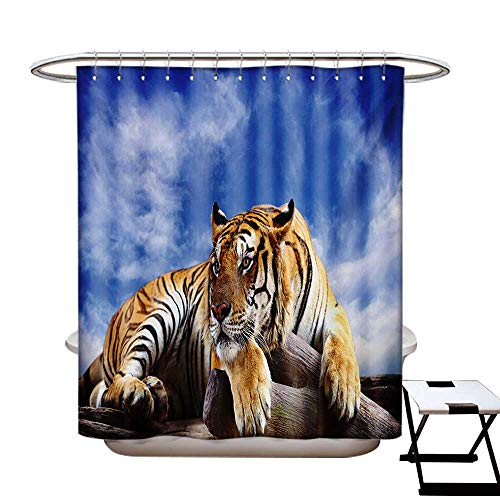 (Safari Shower Curtain Collection by Tiger Sitting on Wood Clear Blue Sky Wildlife Morning Stripes Predator Print Patterned Shower Curtain W36 x L72 Blue Mustard Black)