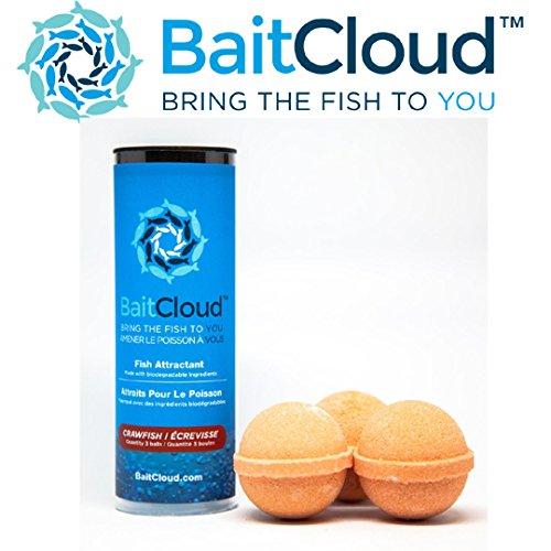 Fish Bait - 9