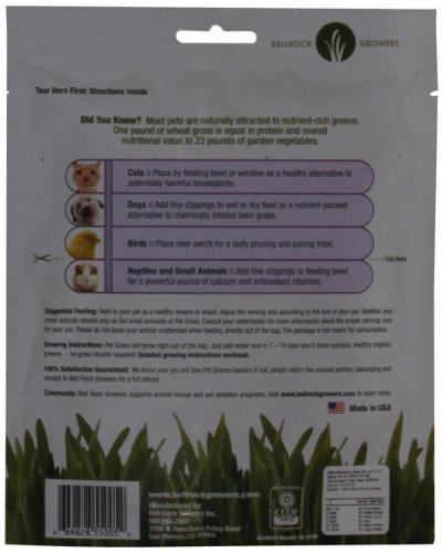 Pet-Greens-Garden-Wheat-Grass-Self-Grow-Kit