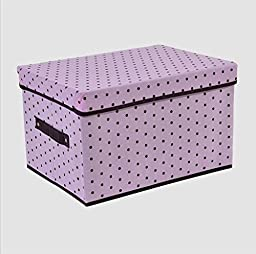 GYMNLJY Home Essential Simple Foldable Accommodating Bag Storage Box Anti-bacterial Space Saver Storage Box£¨pack of 2£ , d , 403025