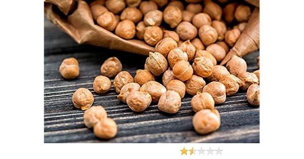 20g Italian Chick Pea Seeds ~60 Seeds Garbanzo Bean ~High Protein Legume ~Hummus