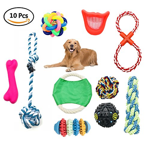Aisamco Dog Rope Toys Dog Teething Toys 10 Pack Best Chew Toys for Puppy Pet Rope Toys Assortment for Small Medium Large Breeds (Assortment Puppy)