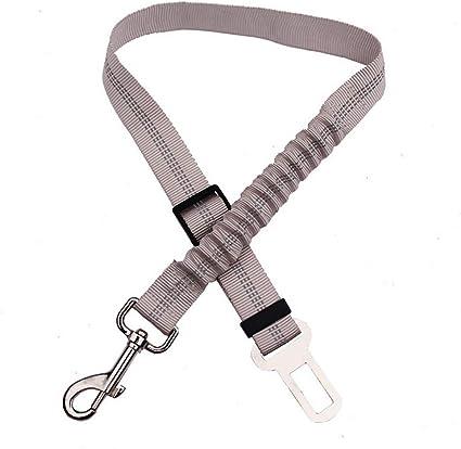 Cinturón de seguridad para perro de compañía, anclaje para ...