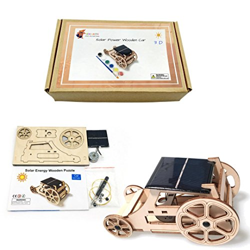Racing Brush Motor (3D DIY Wooden Solar Car Robotics Engineering Maker Kit - STEM Circuit Building Kits Creative Project with Motor Color Brush - Model Toy Educational Activity - Science Experiment For Kids, Teens)