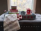 Hallmark Home Holiday Galvanized Serving Tray with Black Plaid and Red Snowflakes