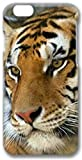 Amazing Hard Plastic iPhone 6 case, Ruyue Shop-King Of Beasts-iPhone 6 case