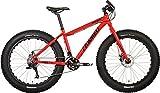 Framed Minnesota 2.0 Fat Bike Sz 20in