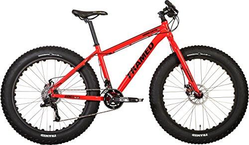 Framed Minnesota 2.0 Fat Bike Sz 18in