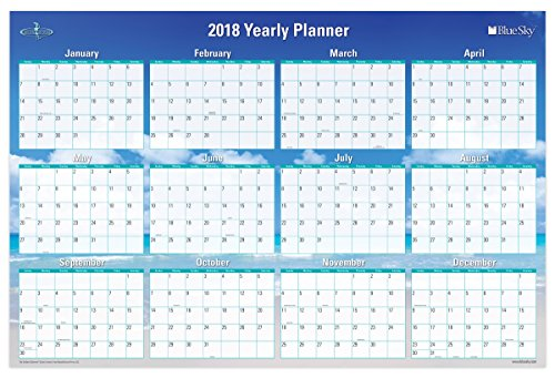 Blue Sky 2018 Laminated Erasable Wall Calendar, Double Sided, 36