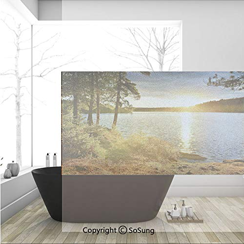 3D Decorative Privacy Window Films,Sunset Dawn in the Forest over Lake of Two Rivers Algonquin Park Ontario Canada,No-Glue Self Static Cling Glass film for Home Bedroom Bathroom Kitchen Office 36x24 I ()