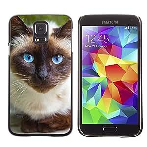TopCaseStore / la caja del caucho duro de la cubierta de protección de la piel - Siamese Cat Blue Eyes Feline Thai - Samsung Galaxy S5 SM-G900