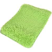 NUOMI Soft Indoor Area Rugs Bedroom Livingroom Floor Cover Carpet Blanket, Modern Shaggy Rugs for Children Play, Home Decorate Floor Mat, Green 16x24