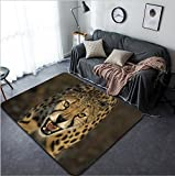 Vanfan Design Home Decorative Cheetah Modern Non-Slip Doormats Carpet for Living Dining Room Bedroom Hallway Office Easy Clean Footcloth