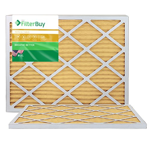FilterBuy 10x30x1 MERV 11 Pleated AC Furnace Air Filter, (Pack of 2 Filters), 10x30x1 – Gold from FilterBuy