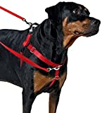 Freedom No Pull Dog Harness, Harness ONLY (Blue, Medium (1'' wide)