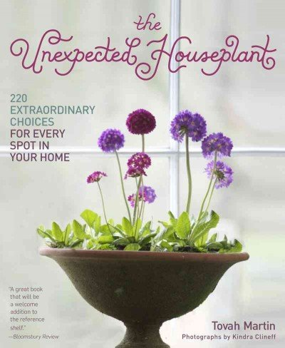 The Unexpected Houseplant 220 Extraordinary Choices For Every Spot In Your Home The Unexpected Houseplant (Extraordinary Plants)