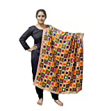 Sahej Suits Multi Coloured Phulkari Bagh with Mirror Work