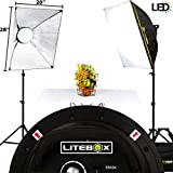 LITEBOX | Professional Photography Lighting Kit  - Continuous LED Softbox Studio Lights with Stands, Portable Softbox Light Diffusers, Travel Bag & Easy Beginners Guide! - (DIMMABLE)