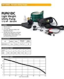 ECO-FLO Products PUP61DC 12 Volt Water Transfer