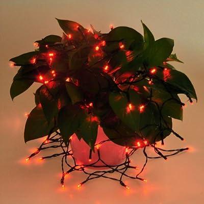 25ft 60 LED Solar Outdoor Christmas String Light White