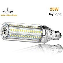 25W Super Bright LED Corn Light Bulb - LED Flood Light Bulbs- E26 Base 2900Lm(116lm/w) 6500K Daylight Cool White for Indoor Outdoor Large Area Lights - Garage Warehouse Street Lamp Post Lighting