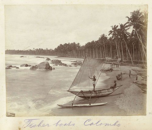 classic-art-poster-lokale-vis-catamarans-aan-het-strand-van-colombo-anonymous-c-1890-c-1910-205-x-24