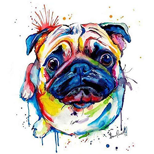 Flowerbeads 5D DIY Diamond Painting Kit Pet Dog Engel Colorful Pug Full Round Embroidery Cross Stitch Mosaic Rhinestone Home Decor Gift