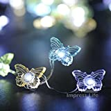 Butterfly String Lights - Ornament Lighting By IMPRESS LIFE 10 ft Copper Wire 50 LEDs with Remote for Wedding, Baby Shower, Covered Outdoor, Indoor Holiday Parties, Garden, Patio Decorative