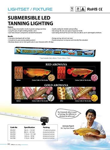 AQUA ZONIC AROWANA LED Tanning Light (115 cm) 31.5 W (Submersible)