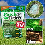 Patch Perfect Grass Seed and Lawn Repair 500 Sq Ft Coverage