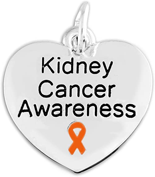 Amazon Com Fundraising For A Cause Kidney Cancer Awareness Charm In A Bag 1 Pc Jewelry