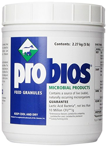 VETS PLUS Probios Feed Granule for Horses, 5-Pound