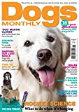 Dogs Monthly
