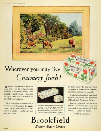 Dairy, Cheese & Eggs - 6