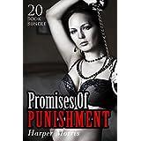 Erotica: Promises Of Punishment (New Adult Romance Bundle)(Erotic Sex Taboo Box Set)