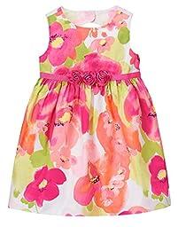 Gymboree Baby Toddler Girls\' Floral Dress, Multi, 2T