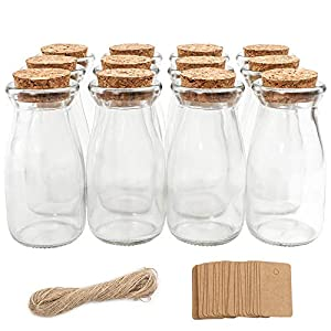 51O7ssj6l5L._SS300_ 50+ Best Glass Bottles With Cork Toppers