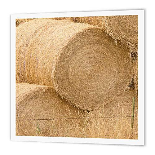 (3dRose Washington, Methow Valley, Farm Hay Bales-Us48 Rti0142-Rob Tilley-Iron on Heat Transfer, 10 by 10