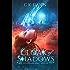 Cloak of Shadows: a YA Coming of Age Urban Fantasy Novel (The Netherwalker Series Book 1)