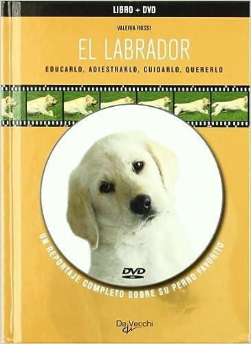 El labrador (libro y DVD) (Spanish Edition): Valeria Rossi: 9788431539306: Amazon.com: Books