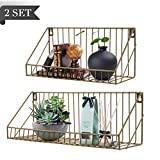 AGSIVO Floating Shelves for Bathroom Wall Shelf with Seamless Nails Set of 2 Hanging Shelves,Decorative Wall Shelves for Kitchen, Living Room, Office and Wire Storage (Gold)