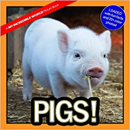 Pigs!: A My Incredible World Picture Book for Children