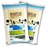 新米 令和1年産 【精米】 新潟県産 こしいぶき 10kg (5kg×2袋) 新潟県直送
