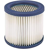 DAYTON Filter Cartridge Filter HEPA